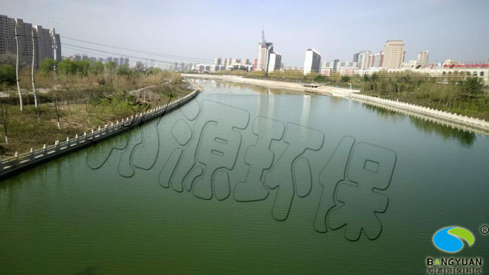 治理前水体藻类滋生,水质变差