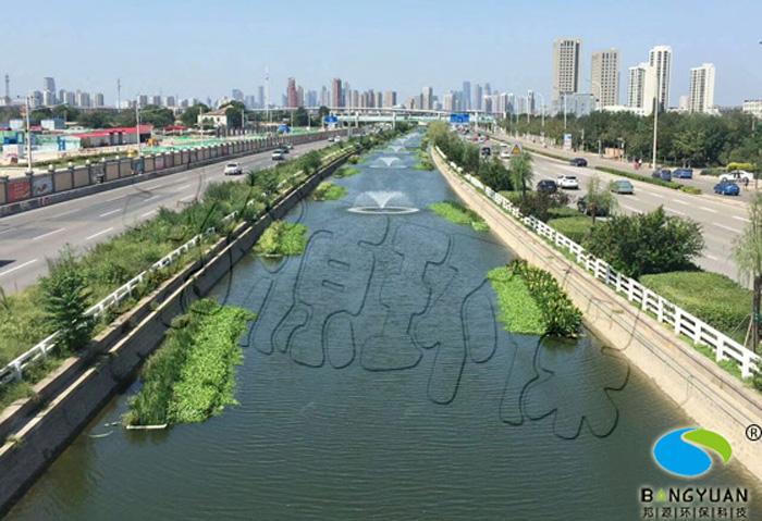 河道生物治理、生态养护技术应用于河道效果图