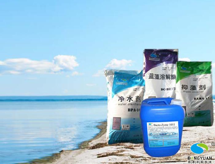 邦源环保景观水生物治理明星产品