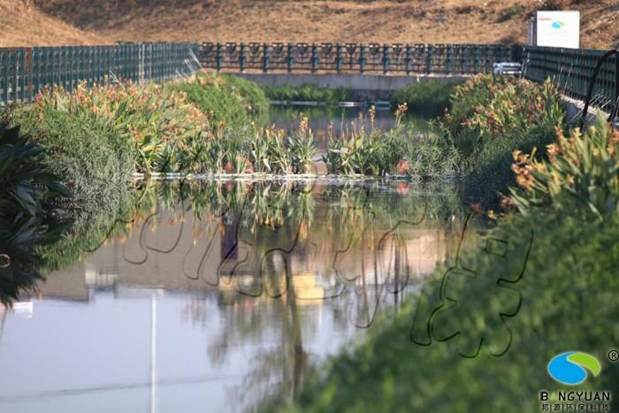 水環境治理應用BY智慧水質提升器及生態修復,使水體表觀恢復正常,水質大幅度提升
