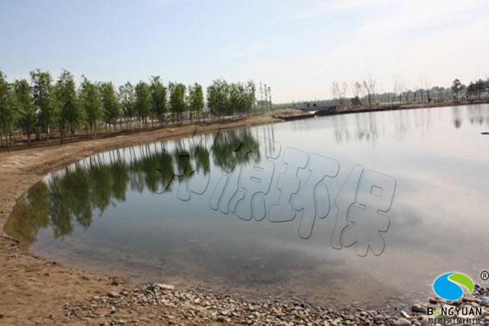 邦源环保园林景观水处理效果图