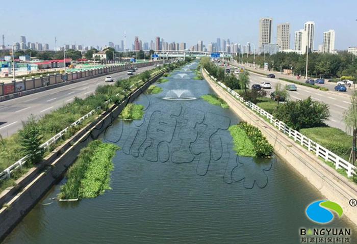 生物治理、生态养护技术应用于河道效果图